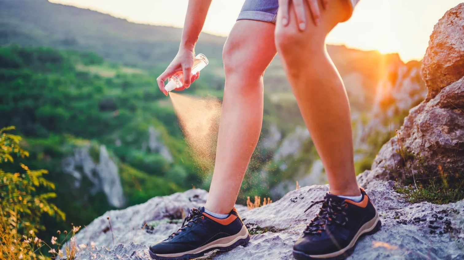 10 Best Insect Repellents in 2021